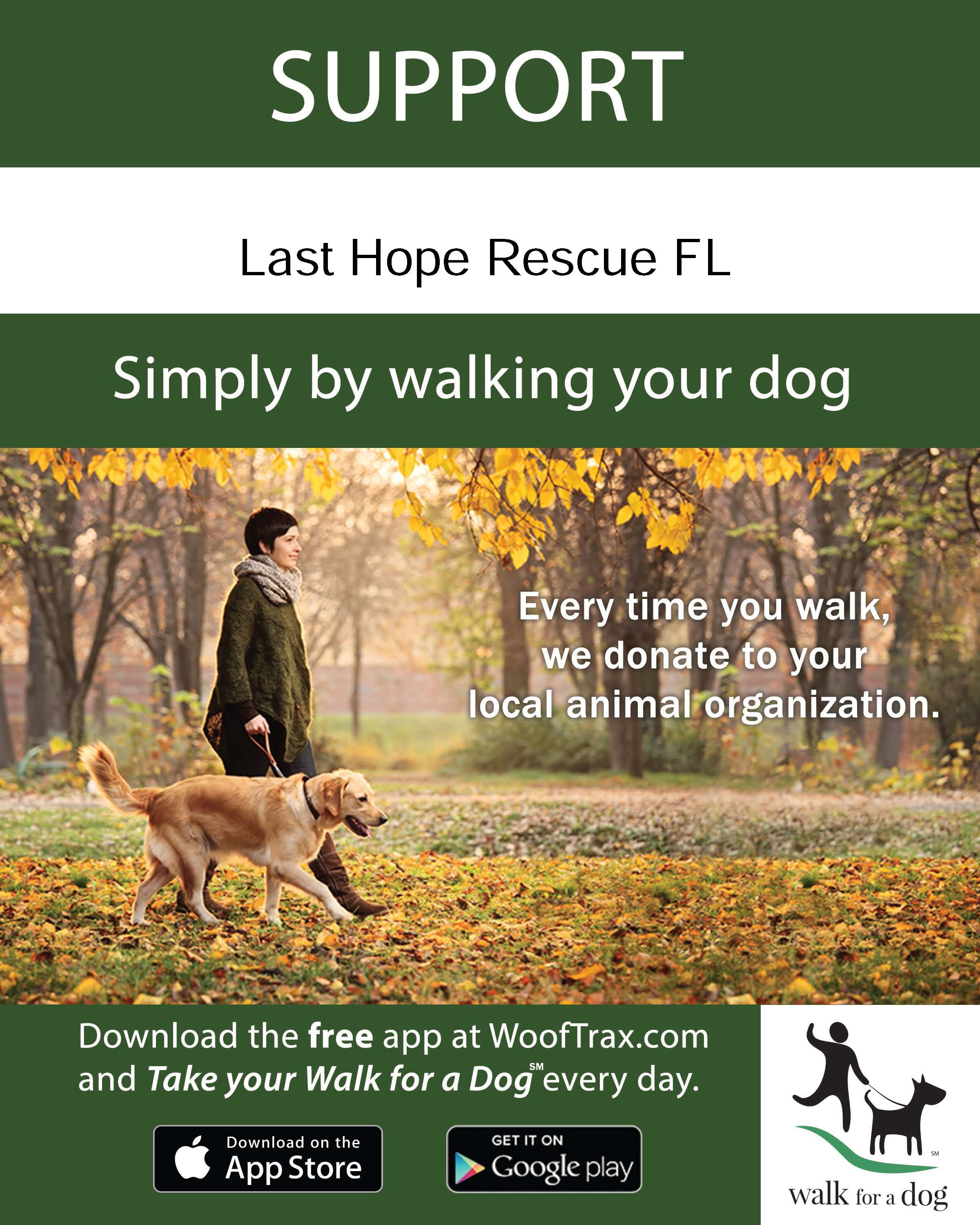 Walk the Dog Flyer